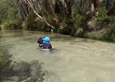 Top 9 things to do on Fraser Island with kids - Eli Creek