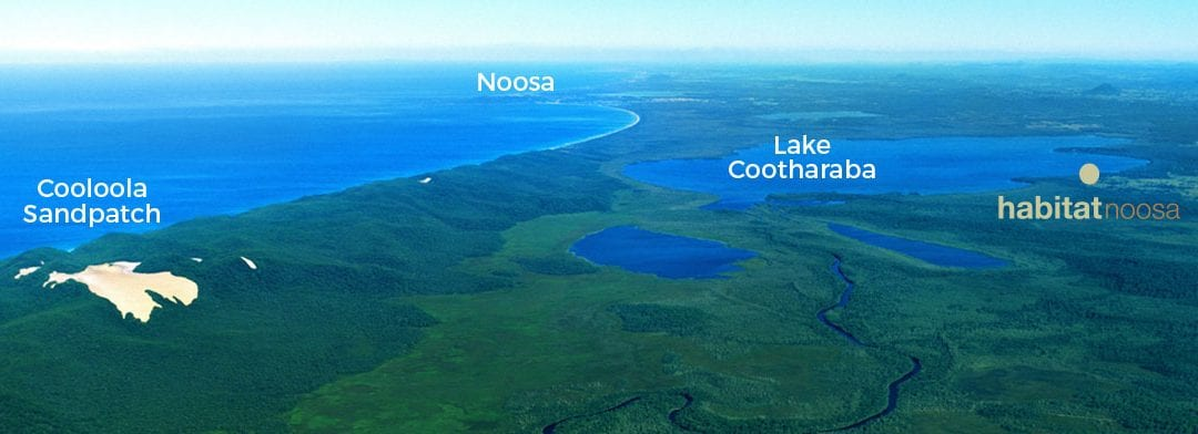 Habitat Noosa Everglades Ecocamp